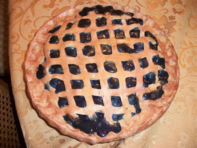 Moms Homebaked Blueberry Pie