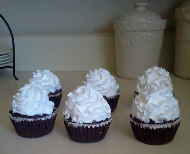 Fluffy White Frosted Cupcakes