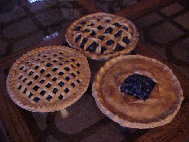 Blueberry Pies