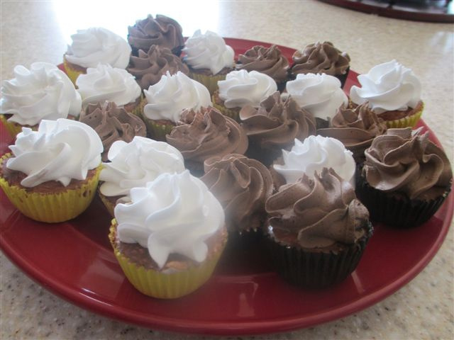 Mini Chocolate and Vanilla Cupcakes